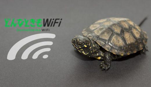 【これで解決】どんなときもWiFiが遅い、つながらない5つの原因と対処法。